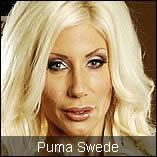 Puma Swede